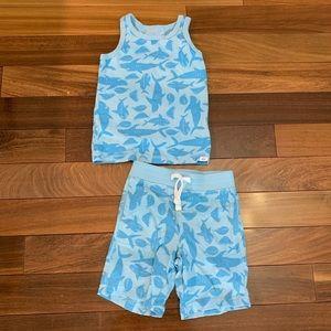 Baby gap Toddler boy 2 piece matching set size 3T